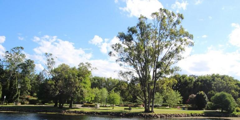 botanical-gardens-benowa1